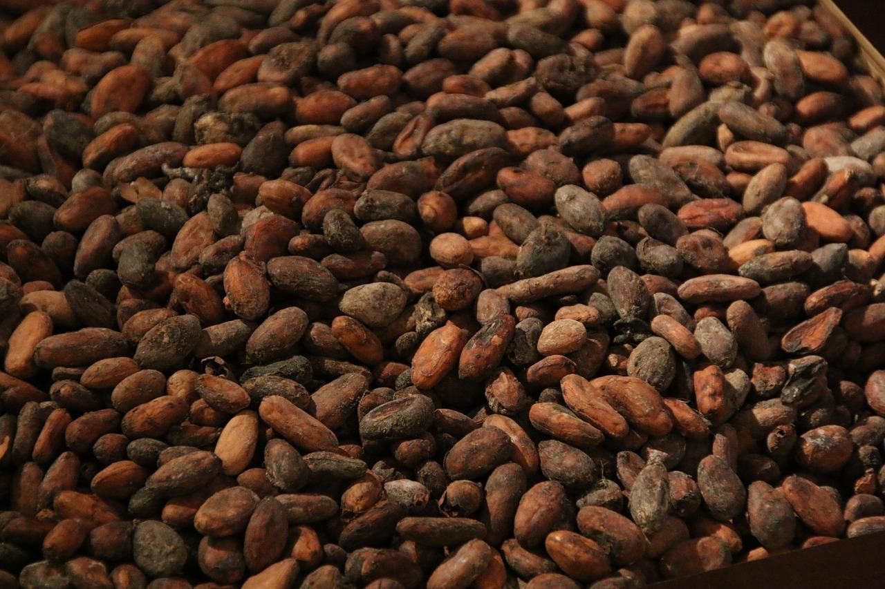 Kakao może opóźnić zachorowanie na cukrzycę