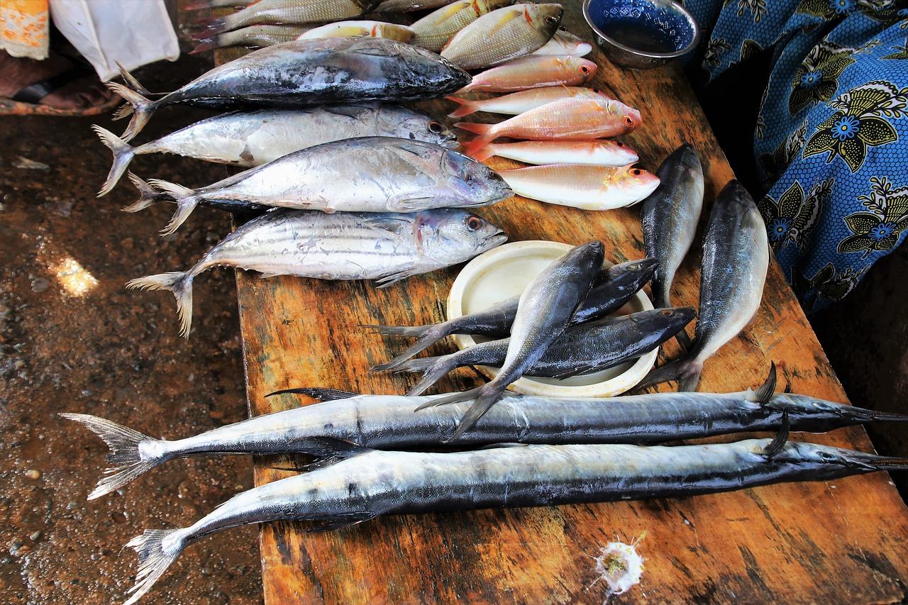 ryby na stole